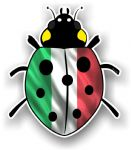 Ladybird Bug Design With Italy Italian Flag Motif External Vinyl Car Sticker 90x105mm